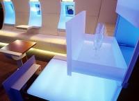 revolutionary new interior concept for the Airbus A319 Corporate Jetliner - design Luc Simon